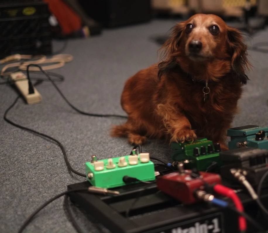 Lucy Mae points out which pedal should be used in a certain song
